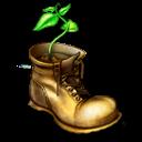 Planta en un zapato